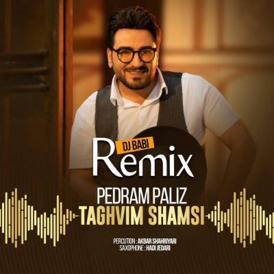 Pedram Paliz - Taghvim Shamsi (Remix)