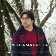 محمدرضا زارع فرد - عشق