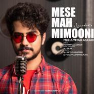 محمد عسکری - مثه ماه میمونی