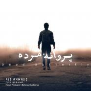علی احمدی - پروانه ی مرده