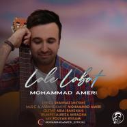 محمد عامری - لعل لبت