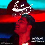 رضا ملک زاده - دوست دارم