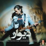 امیر علی رحیمی - دیوار