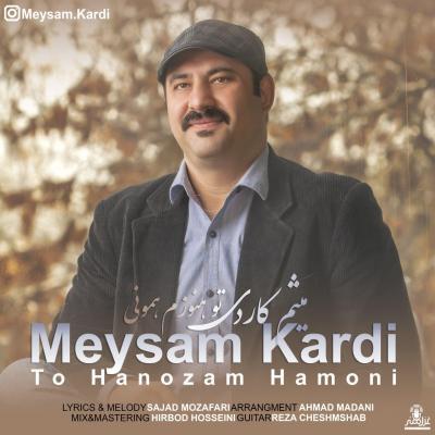 Meysam Kardi - To Hanozam Hamoni