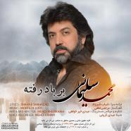 محمد سلیمانی بر باد رفته
