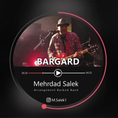 Mehrdad Salek - Bargard