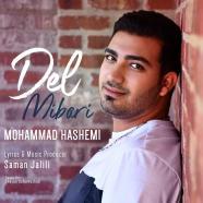 محمد هاشمی - دل میبری