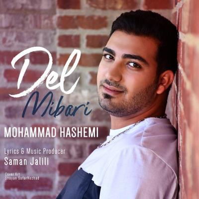 Mohammad Hashemi - Del Mibari