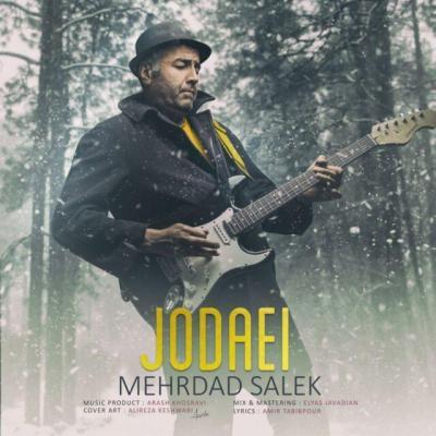 Mehrdad Salek - Jodaei