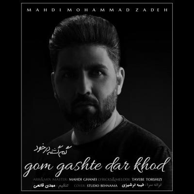Mehdi Mohammad Zadeh - Gom Gashte Dar Khod