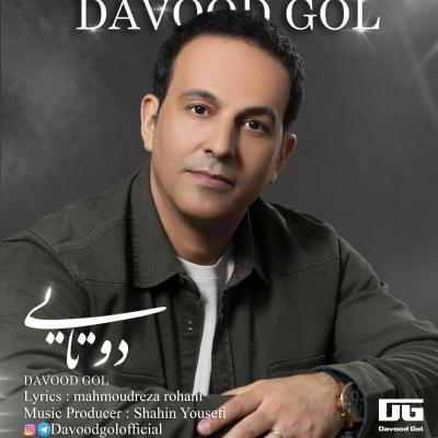 Davood Gol - Do Tayi