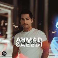 احمد سعیدی - شاه کلید