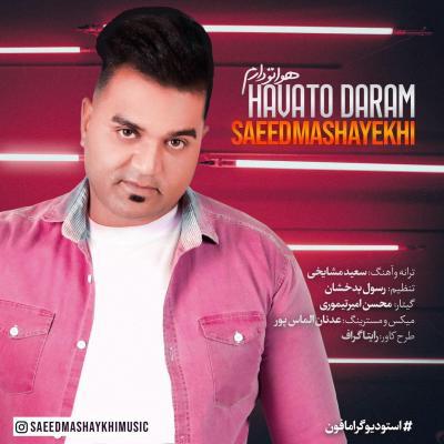 Saeed Mashayekhi - Havato Daram