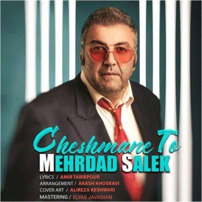 Mehrdad Salek - Cheshmane To