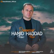 حمید حداد - دیوونه وار