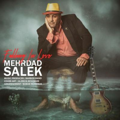 Mehrdad Salek - Falling In Love