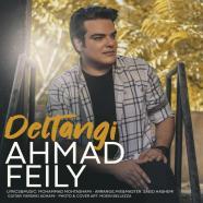احمد فیلی - دلتنگی