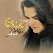 احمد فیلی - نوستالژی