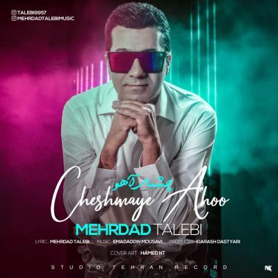 Mehrdad Talebi - Cheshmaye Ahoo