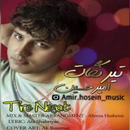 امیرحسین حسینی  - تیر نگات