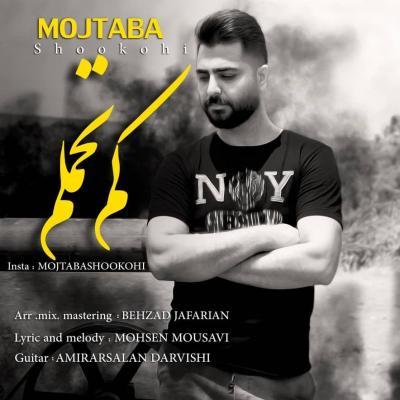 Mojtaba Shokouhi - Kam Tahamolam