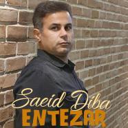 سعید دیبا - انتظار