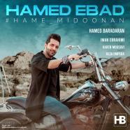 حامد عباد - همه میدونن