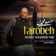 مسعود محمد نبی - تجربه