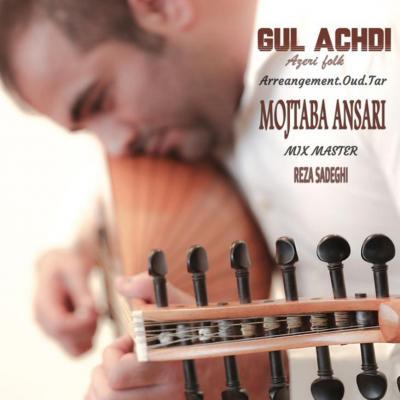 Mojtaba Ansari - Gul Achdi