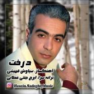 حسین صادقی - درخت