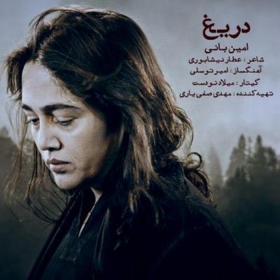 Amin Bani - Darigh